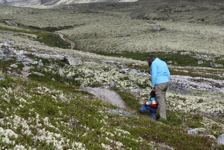 Mit großen Schritten ins Abenteuer - Miriam mit 18 Monaten in Norwegen unterwegs