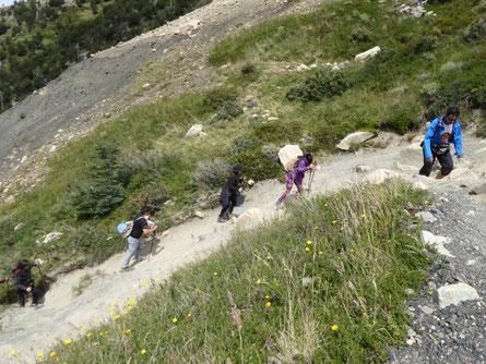 Torres del Paine, Wanderer