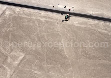 Les lignes de Nazca Pérou