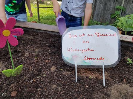 Alle packen mit an - auch die Kindergartenkinder aus Störmede kümmern sich um ihr Hochbeet