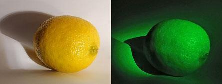 Citron éclairé par un laser vert