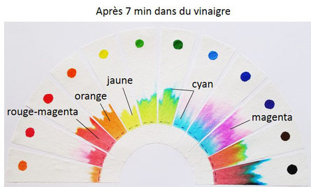 Chromatographie dans du vinaigre