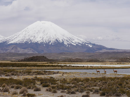 Lauca Nationalpark Chile