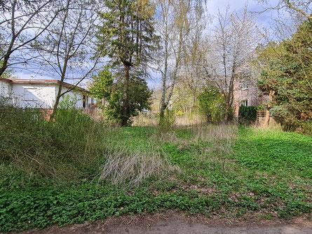 Olewischtwiet 26a - Haus für Straße abgerissen, Natur erobert sich das Grundstück