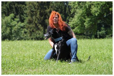 Hundetrainer und Hund,  Hundeverhaltensberatung, Verhaltenstherpie, Einzeltraining, Rems-Murr-Kreis