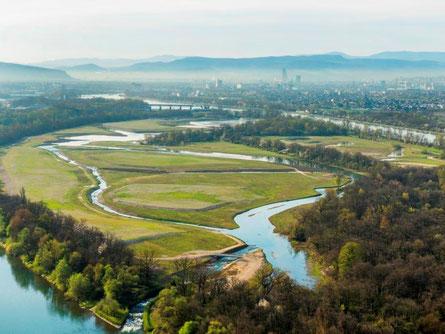Ile du Rhin:   Foto aus Acceuil Tourisme  Ville de Kembs