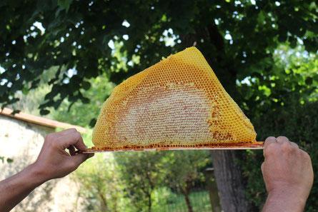 Breche de miel