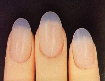 爪の形ポイント