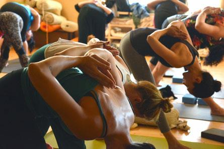 Yoga Neuss Yoga Düsseldorf Yoga Yoga NRW Gesundheit Gesundheitsprävention Gesundheit