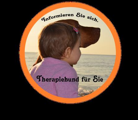 therapiehundeausbildung für autistische kinder in deutschland österreich und der schweiz. Therapiehund für Kinder mit Autismus , therapiehund für autistisches kind