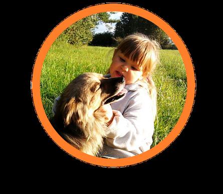 Therapiehund  Assistenzhunde Autismusbegleithunde delia mit floh in Ausbildungsstätte Kitzingen Bayern Therapiebegleithund  , Diabetiker Warnhund , Epilepsiewarnhund , Autismushund . Auch in Österreich und Schweiz.