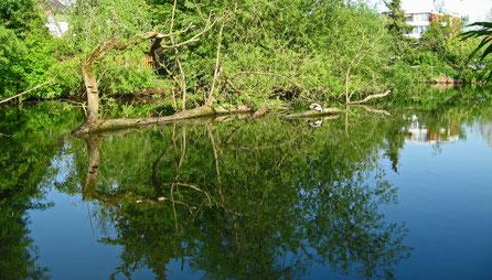 Kleiner Segeberger See