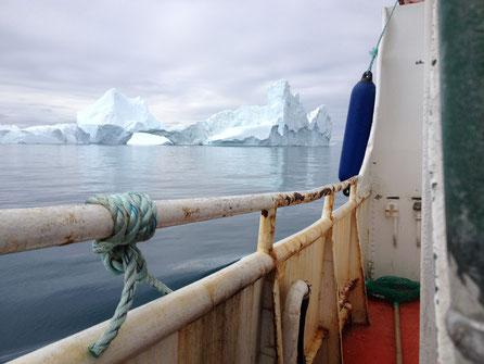 Arktis Foto (c)  Ulrike Filgers