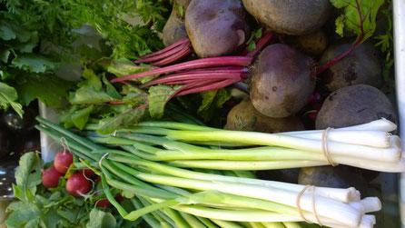 Rote Bete,Raiz de Beterraba,Beetroot,Gemüse,Legumes,Vegetables,Martins-Kulinarium,Carvoeiro,Algarve,Portugal