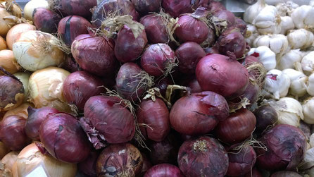 Zwiebel,Cebola,Onion,Gemüse,Legumes,Vegetables,Martins-Kulinarium,Carvoeiro,Algarve,Portugal