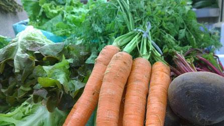 Karotte,Cenoura,Carrot,Gemüse,Legumes,Vegetables,Martins-Kulinarium,Carvoeiro,Algarve,Portugal