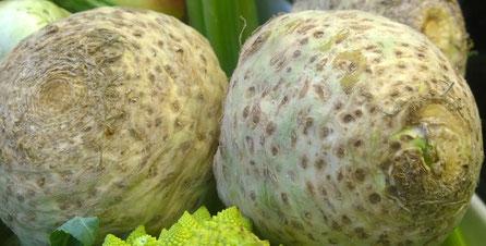 Sellerie,Aipo,Celery,Gemüse,Legumes,Vegetables,Martins-Kulinarium,Carvoeiro,Algarve,Portugal