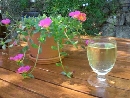 Ein Glas Wein am Nachmittag im Garten der Porca Preta,Pontalinho in der Serra de Monchique im Hinterland der Algarve,Süd Portugal