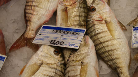 Ferreira,Fisch,Peixe,Fish,Martins-Kulinarium,Algarve,Portugal