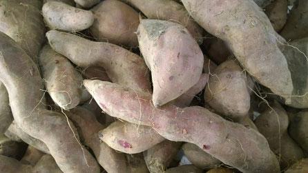 Batata Doce,Sweet Botato,Gemüse,Legumes,Vegetables,Martins-Kulinarium,Carvoeiro,Algarve,Portugal