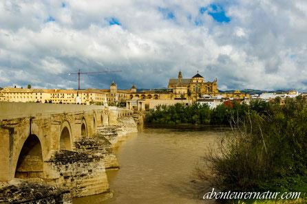 Römische Brücke- Cordoba