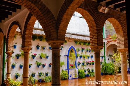 Innenhof einer kleinen Galerie- Cordoba