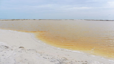 The Yellow Lake