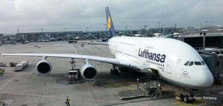 A380, Wien,Frankfurt Main, Peter Rehberg