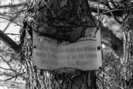 Gegenständliche Fotografie auf Detailblick Fotografie -  Einwachsendes Schild im Baum