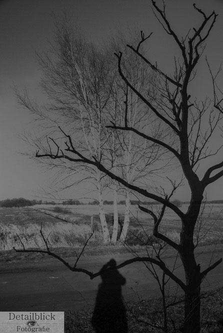 Doppelbelichtung: Zwei Bäume und ein Schatten