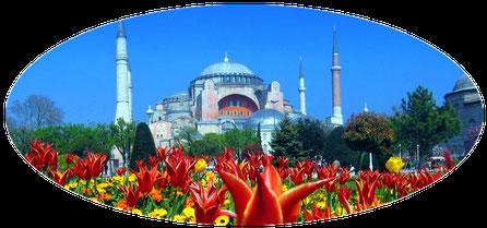 Private Ganztages-Stadtführung Istanbul für Einsteiger