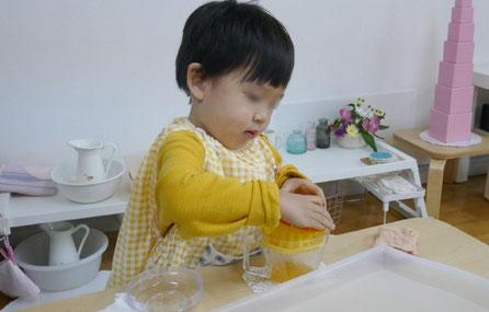 母子分離の2才児がモンテッソーリの日常生活の活動で、手を上手に使ってみかんを絞っています。