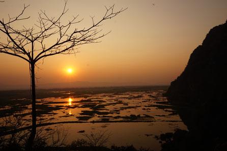 Reisfelder, Sonnenuntergang