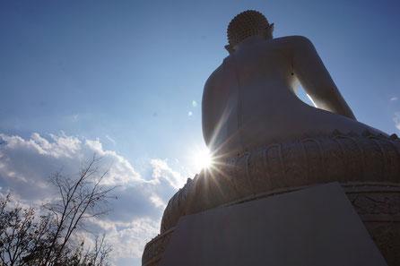 weißer Buddha, Sonne