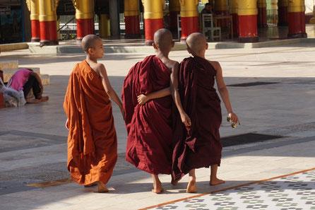 Mönche, Kinder, Nähe, Verbundenheit, Kontakt