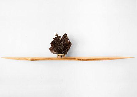 W1013 · Wych Elm#wallart#wallshelf#woodworking#interiordesign#woodsculptures#art#woodart#wooddesign#decorativewood#walldecoration#wallsculpture#originalartwork#modernwoodsculpture#joergpietschmann#oldwood