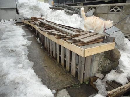 積雪79cmから菜園BOXの基礎部分掘り起こす