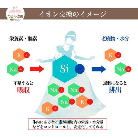 イオン交換のイメージ