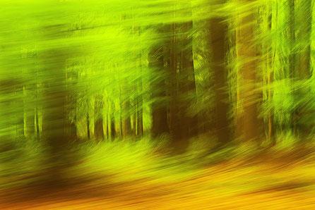 green / speed...