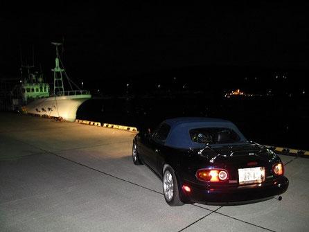 増毛港に到着。カモメが水面に浮いて寝ている。