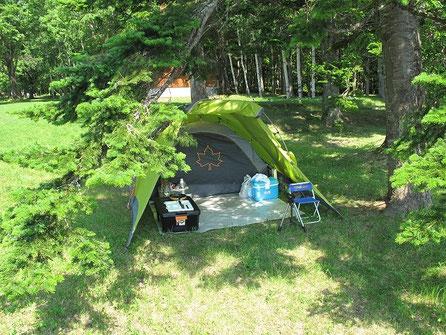 テントの様子はこんな感じ。