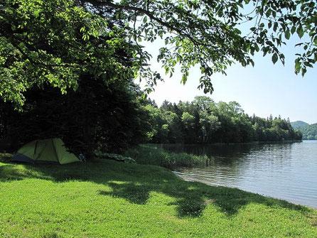 湖畔にテントを設営した。今日は暑いので木の下に・・