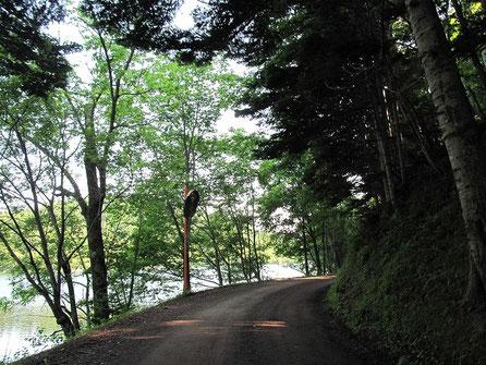 チミケップ湖が見えた! ガードレールが無いので危険。