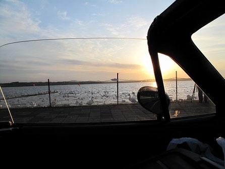 18:10 クッチャロ湖に到着。白鳥がお出迎え。