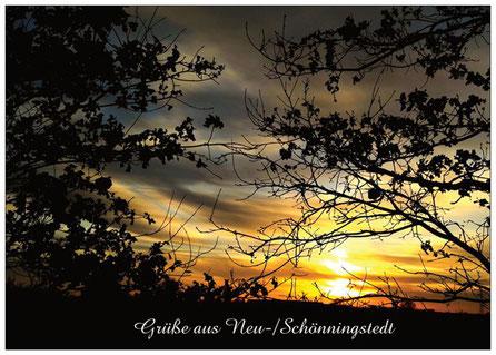 286 Schönningstedt Sonnenuntergang 2