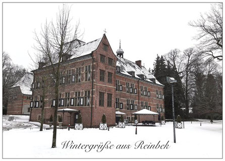 236 Reinbek Schloss Winter