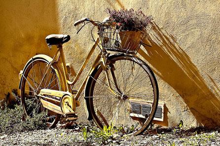 Fahrradhelme, Schlösser und mehr für kleine und große Radler