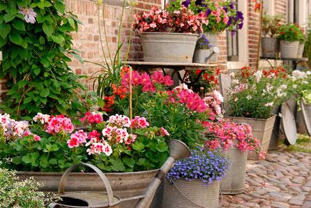 Gießkannen, Blumentöpfe und was Dein Gärtner-Herz erfreut