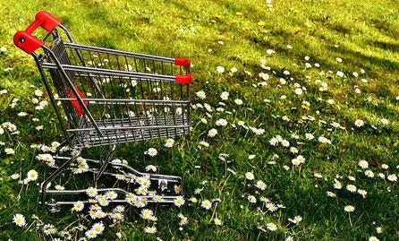 Einkaufswagen auf der Wiese - Werbeartikel und Sonderposten HEIMWERK Baumarkt Genthin