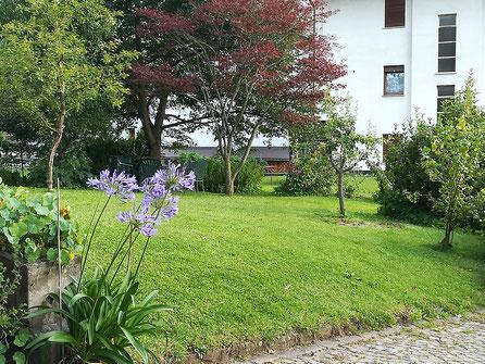 Il grande giardino ombreggiato e tranquillo